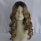 Parrucca riccia di qualità superiore del merletto dei capelli umani