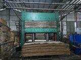 20 couches de 800tons de presse chaude de contre-plaqué
