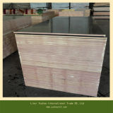 Waterproof Glue Black Film Faced Plywood for Oman Market