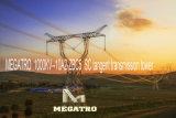 Torretta della trasmissione di tangente dello Sc di Megatro 1000kv-10A2-Zbc5