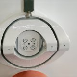 Máquina da pelota da alimentação animal para a alimentação concentrada