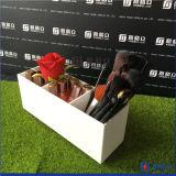 Oplossing van de Opslag van de Borstels van de Schoonheidsmiddelen van de Organisator van de Houder van de Borstel van de make-up de Acryl