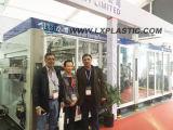 중국 최고 공장 인기 상품 진공 및 압력 Thermoforming는 처분할 수 있는 컵을%s 기계를 만드는 컵을 기울 주조한다