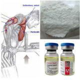 Hormona anabólica da suspensão do teste do pó popular da matéria- prima das testosteronas
