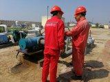 중국의 국제적인 기름 보관 창고 위임에 있는 엔지니어
