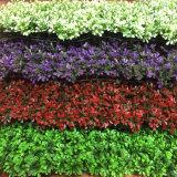 Jardín Vertical artificial para la decoración de paisaje
