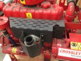 Moteur diesel jeux de lutte contre les incendies d'entraînement de pompe