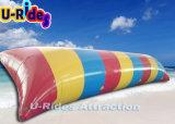 10m de comprimento Blob água insuflável de tamanho grande
