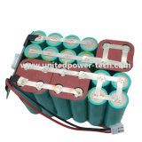 Li-ion Lithium LiFePO4 Batterie Rechargeable pour E-Bikes