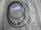 20-3030900113 de Vervangstukken van de verzegelende Ring LG956