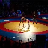 Hot Sale Wrestling Cache de style Art martiaux Judo Tapis Tapis de lutte Closed-Cell PVC