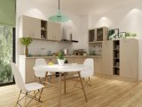 熱い販売法の現代デザイン木の食器棚