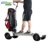 Motorino elettrico di golf della rotella di Ecorider 4, pattino elettrico di golf