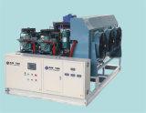Vendita calda 15t a 24 ore del ghiaccio di macchina del fiocco per l'industria della pesca