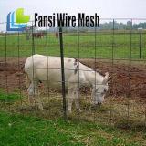 Carneiros/exploração agrícola/campo/cerca galvanizados do engranzamento fio dos cervos