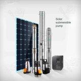 Wasser-Pumpe auf Solar Energy angeschaltener Wasser-Solarpumpe