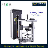 Sterk Roterend Torso tnt-011/van het lichaam de Apparatuur van /Strength van de Apparatuur van de Geschiktheid