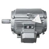 Generatore sincrono a magnete permanente basso di pmg RPM con alta efficienza