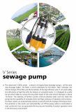 3 fase die niet de Pomp van het Water van de Irrigatie van het Landbouwbedrijf belemmeren