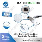 luz de calle al aire libre solar de 20W LED con la luz de Bridgelux LED