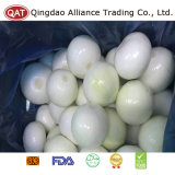 Top Quality Fresh Purple Onion