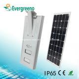 Todos en una luz de calle solar integrada del LED para la iluminación al aire libre