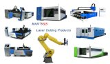 machine de découpage de laser de fibre de la commande numérique par ordinateur 1000W pour le découpage en métal