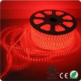 Indicatore luminoso di striscia all'ingrosso di RGB 5050 110-220V LED