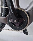 20 بوصة كربون ليف إطار مستورد درّاجة كهربائيّة مع [يوبو] [ت300] منتصفة ساحقة محرك