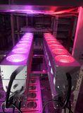 のためのLEDの壁の洗浄照明設備280Wアメリカ市場