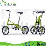 Una segunda bicicleta plegable / camino de la bicicleta