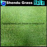 25mmの二重裏付けを持つ人工的な泥炭の草