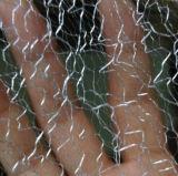 Tessuto di maglia di modo