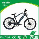 E 자전거 허브 모터를 가진 36V 250W 페달 보조 자전거