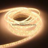Illuminazione decorativa 2835 strisce 600LEDs del LED per i centri commerciali domestici