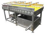Leere Flaschen-Waschmaschine/gelber Pfirsich, der Maschinerie aufbereitet