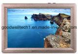 "1920X1200 panneau IPS 7""TFT LCD moniteur"
