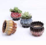 Het tuinieren de Mini Ceramische Vaas van de Pot van de Bloem