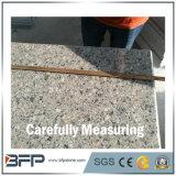 Granit naturel chaud pour revêtement de sol / carrelage mural / comptoir
