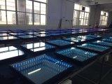 de LEIDENE van het Stadium van het Overleg van de Verlichting van LEDs van de Decoratie van de Disco van het Huwelijk van 50X50cm 3D Bevloering van de Dans