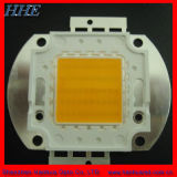 RoHS pasan 50W Blanco integrados LED de alta potencia