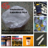 Le Chitosan maintiennent les graisses et le cholestérol dans l'estomac CAS 9012-76-4