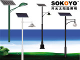 certification approuvée 3.5m Polonais de la CE de lumière solaire du jardin 15W
