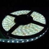 Striscia impermeabile della striscia 12v SMD 3528 chiari flessibili LED