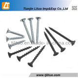 Bugle Head Fine Thread Black fosfatado Drywall parafuso