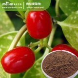 100% Natural chino Wolfberry extracto de fruta