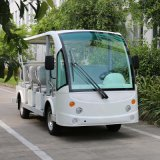 Automobile elettrica del ricorso delle 14 sedi per turismo che fa un giro turistico (DN-14)