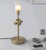 De moderne Verlichting van de Tegenhanger van het Metaal van de Woonkamer (MD8133-12)