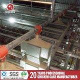 Q235 Wire Mesh galvanisé à chaud pour une meilleure vente de la cage de couche
