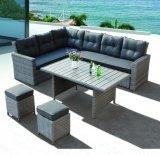 Pátio com jardim de vime Vime Kansas Lounge Hotel Home Office Mobiliário de exterior (J545)